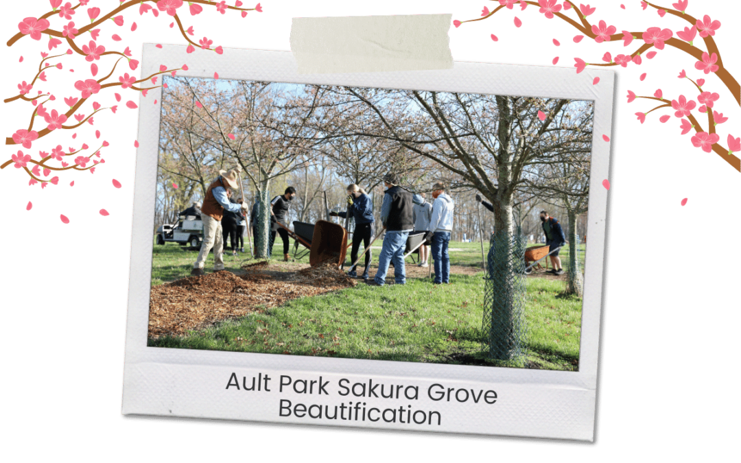 Sakura Tree Care Event – Saturday March 27 – Ault Park